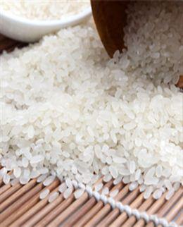 湿打大米粉 25kg 细腻,米香味足